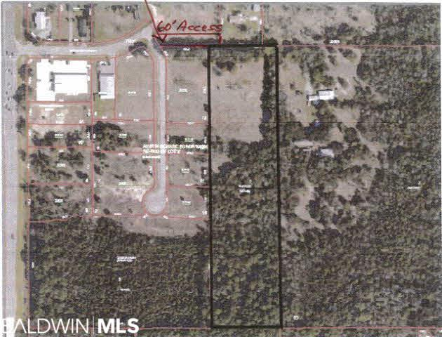 20020 East Richard Childress Ln, Gulf Shores, AL 36542