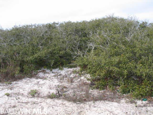 0 Sea Shell Dr, Gulf Shores, AL, 36542
