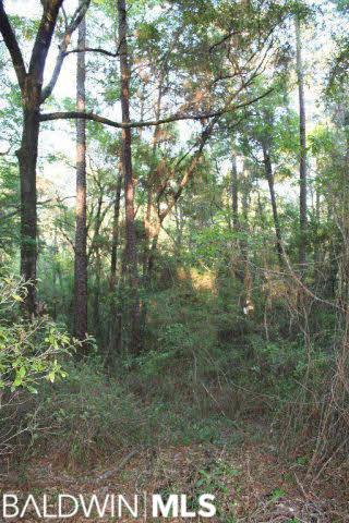 0 Browns Landing Road, Seminole, AL 36574