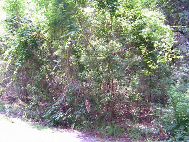 0 Chestnut Drive, Foley, AL 36535