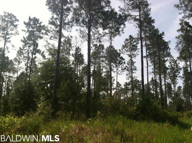 2 Truck Route 17, Loxley, AL, 36567