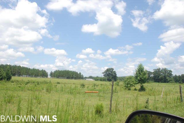 0 US Highway 31, Castleberry, AL, 36432