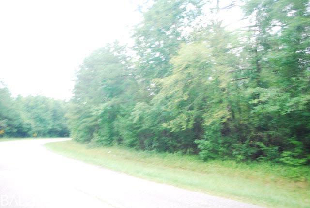 0 County Road 6, Castleberry, AL, 36432