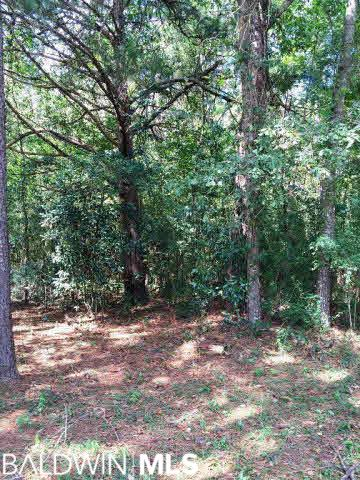 0 Cedar Hill Loop, East Brewton, AL 36426