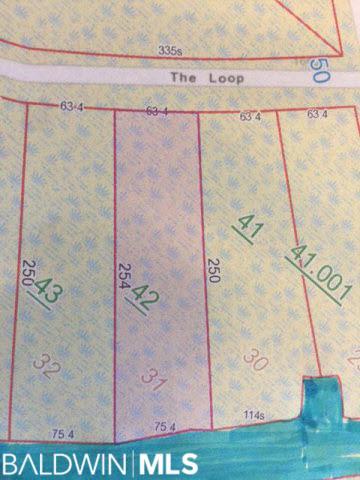 16400 The Loop, Gulf Shores, AL 36542