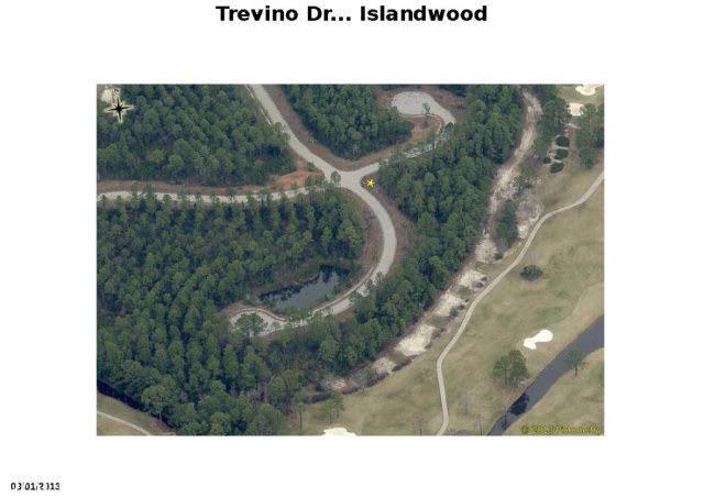 0 Trevino Dr, Gulf Shores, AL 36542