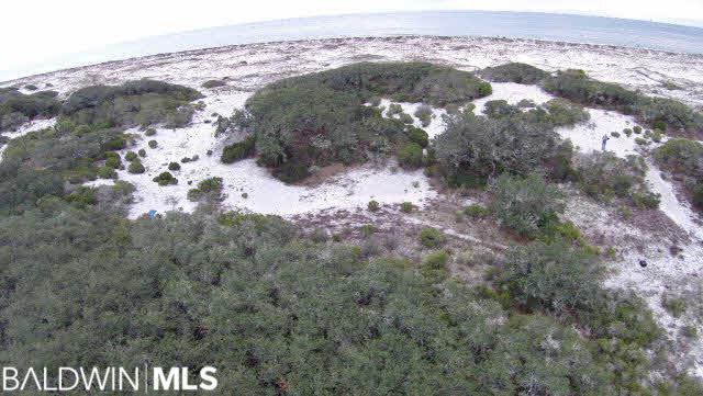 primary sand dune