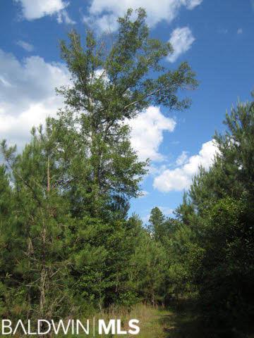 0 County Road 8, Deer Park, AL 36529