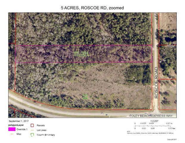 0 Roscoe Rd, Gulf Shores, AL 36542