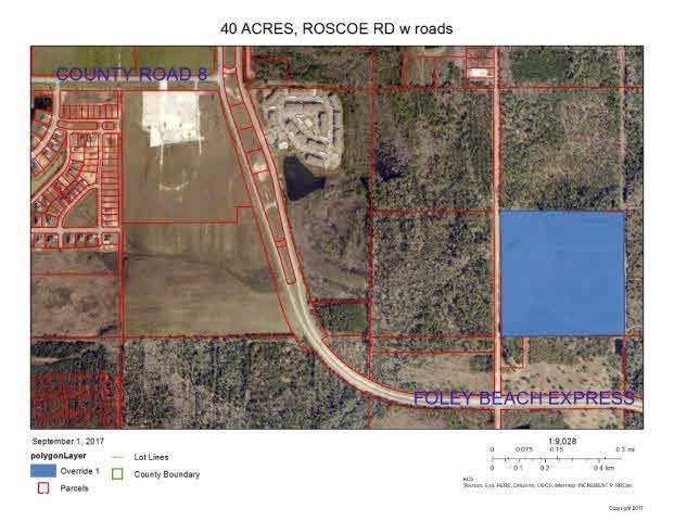 6684 Roscoe Rd, Orange Beach, AL 36561