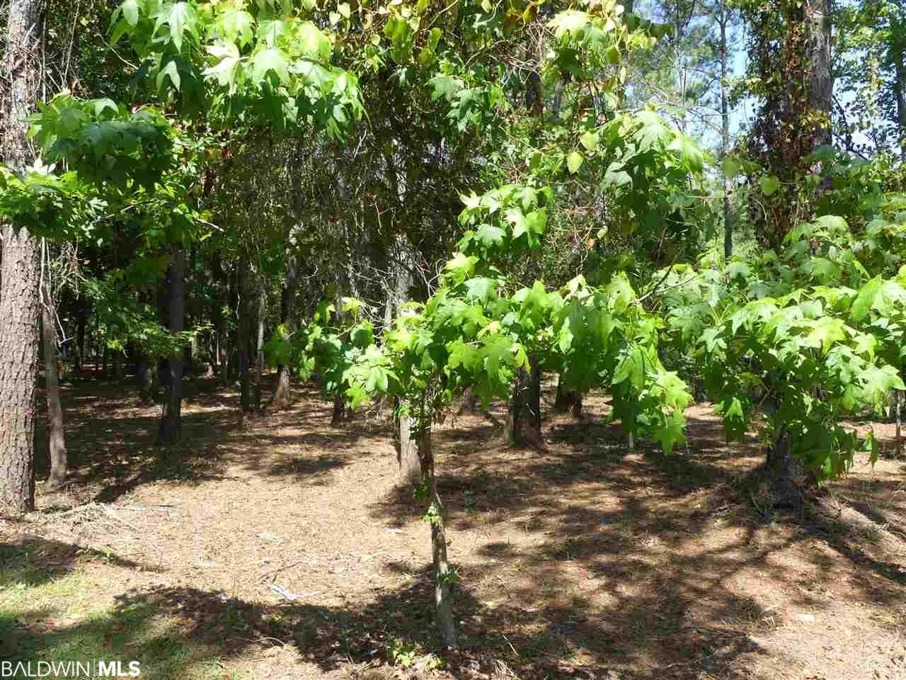 0 Mossy Oak Dr, Gulf Shores, AL 36542