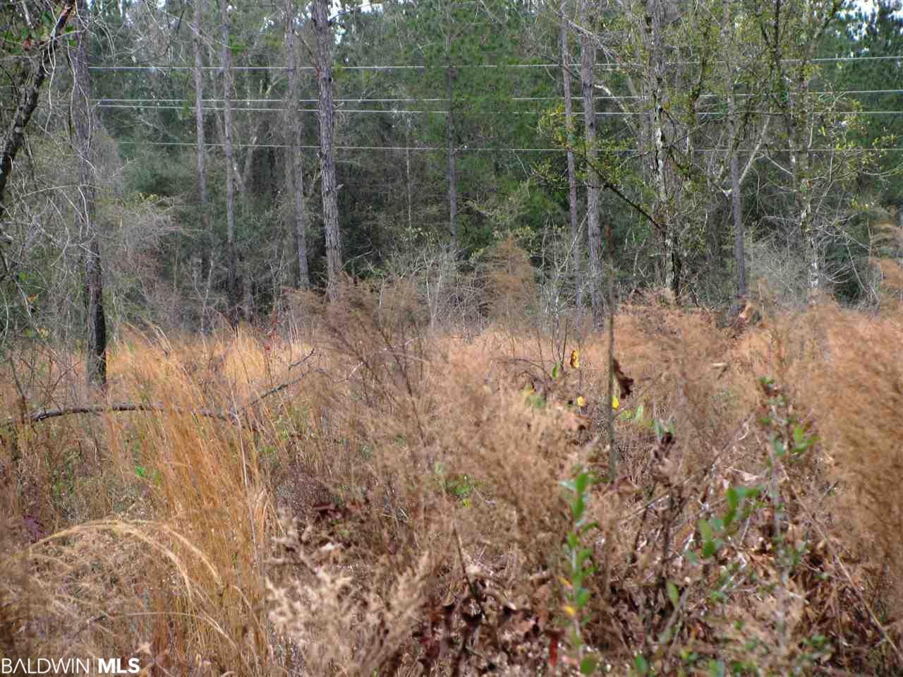 Lot 6 County Road 64, Robertsdale, AL 36567