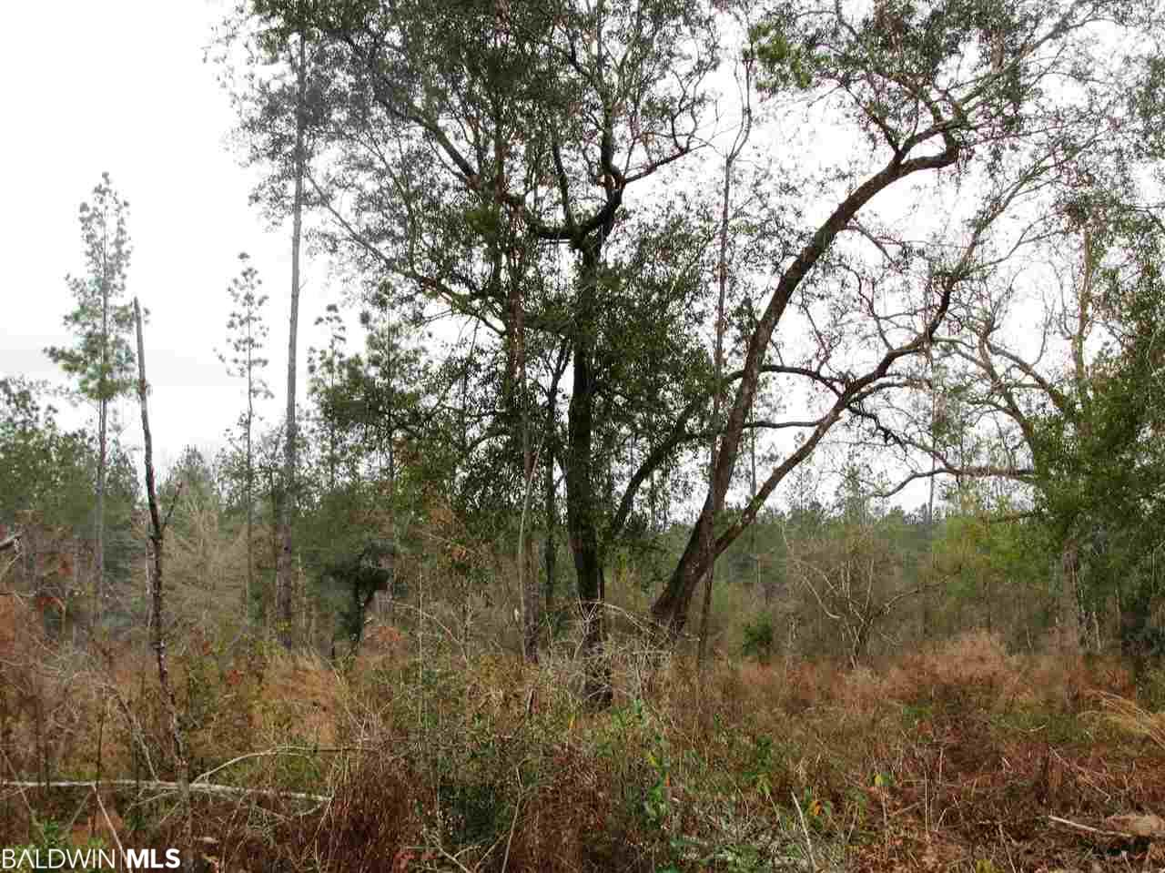 Lot 5 County Road 64, Robertsdale, AL 36567
