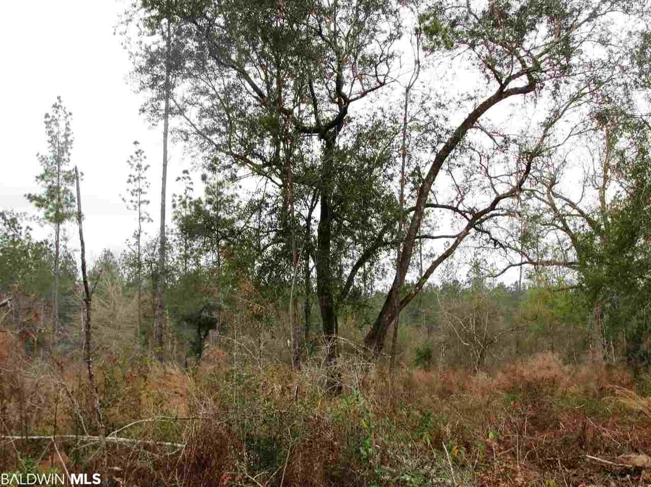 Lot 1 Osprey Lane, Robertsdale, AL 36567