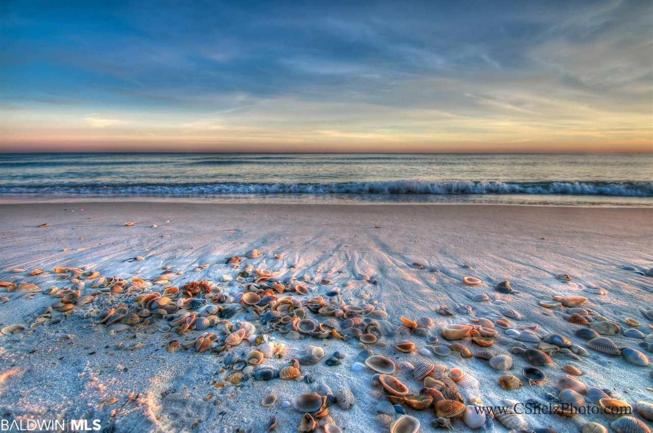 29250 Perdido Beach Blvd #1004, Orange Beach, AL 36561