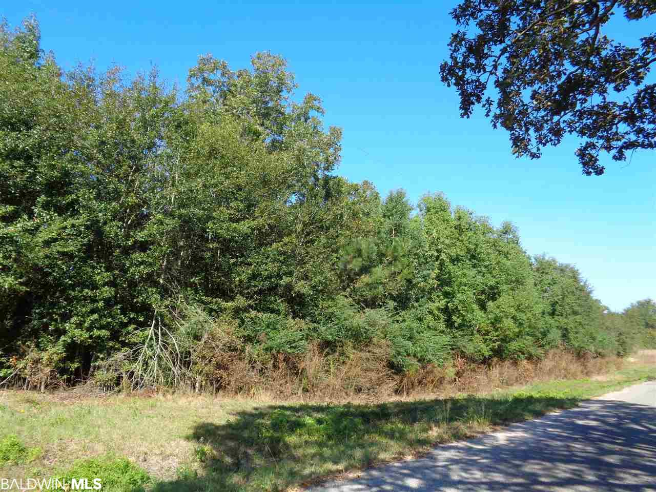 0 Freemanville Drive, Atmore, AL 36502