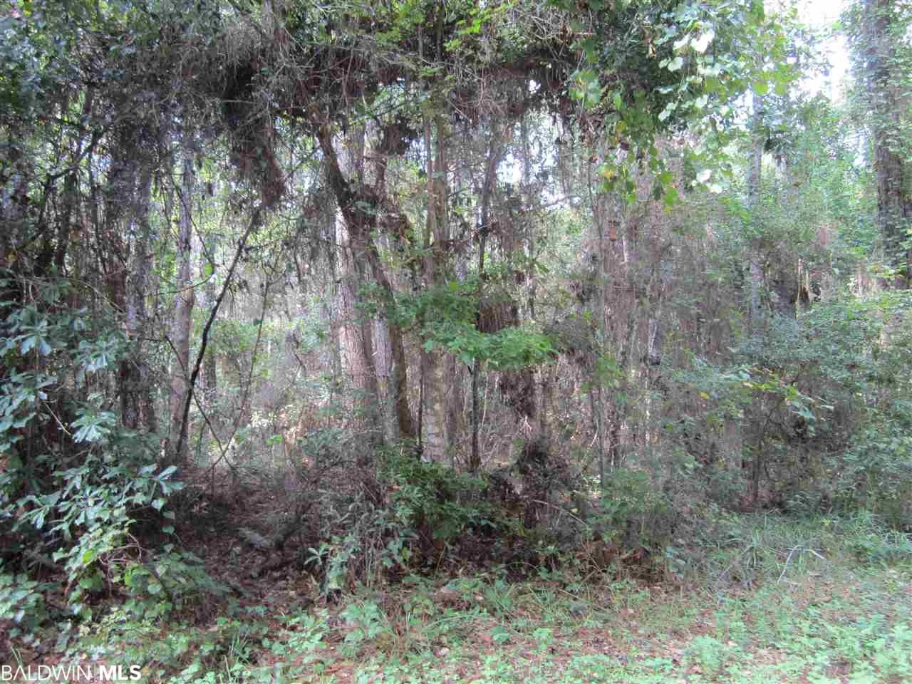 0 E Baudin Lane, Magnolia Springs, AL 36555