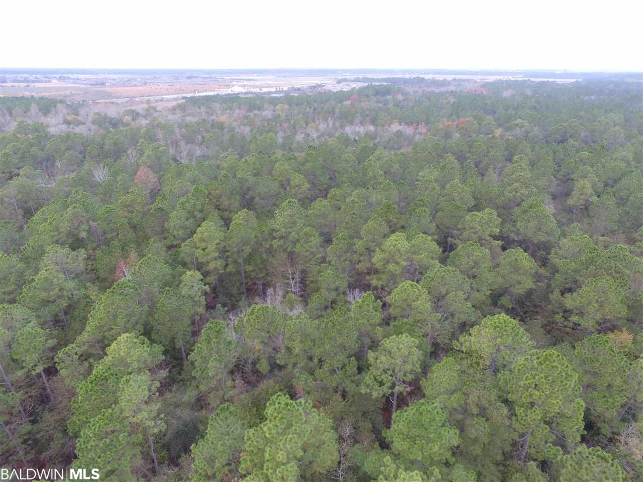 Great location! Just off the Foley Beach Express.  38 ACREAS FOR SALE.  Near the proposed Auburn development and teh proposed Gulf Shores Higher Education Campus.  Short drive to beaches and OWA theme park, the new family-friendly retail, dining and entertainment destination in Gulf Shores, Alabama!