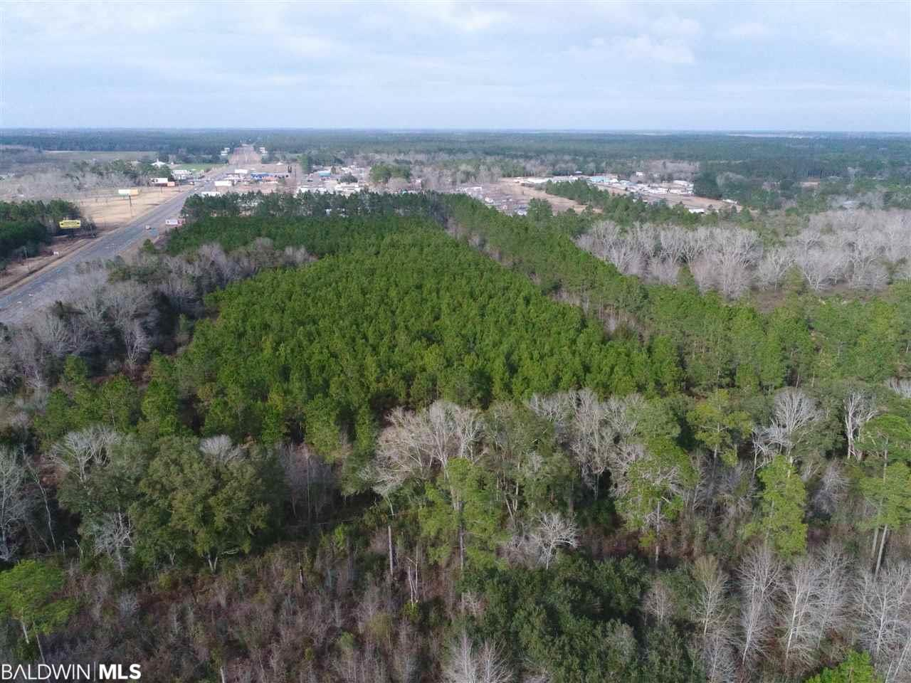 0 Foley Beach Exp, Foley, AL 36535