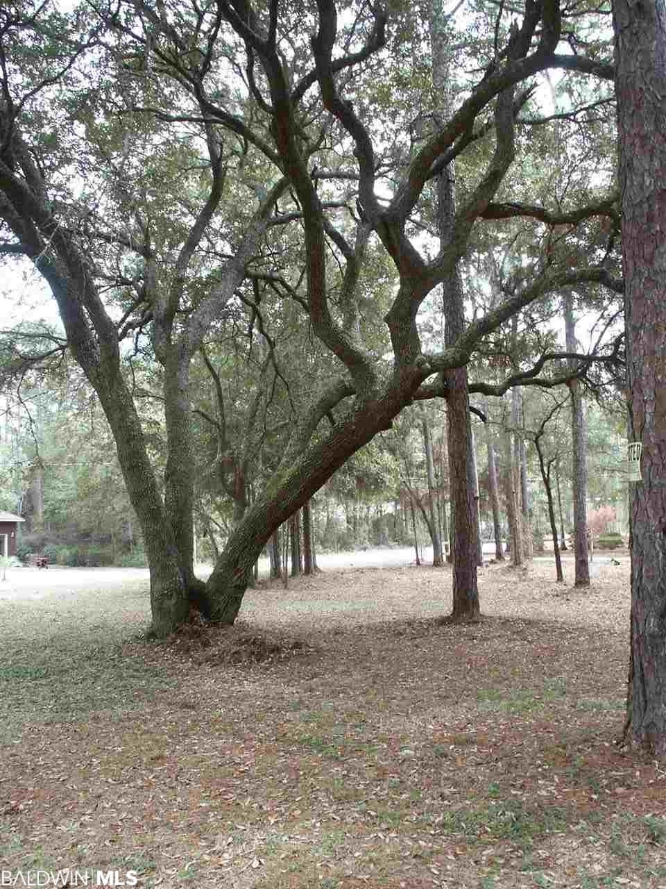 North Bayou Road, Lillian, AL 36549