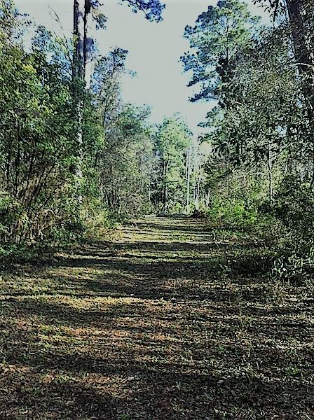3 County Road 10, Foley, AL 36535