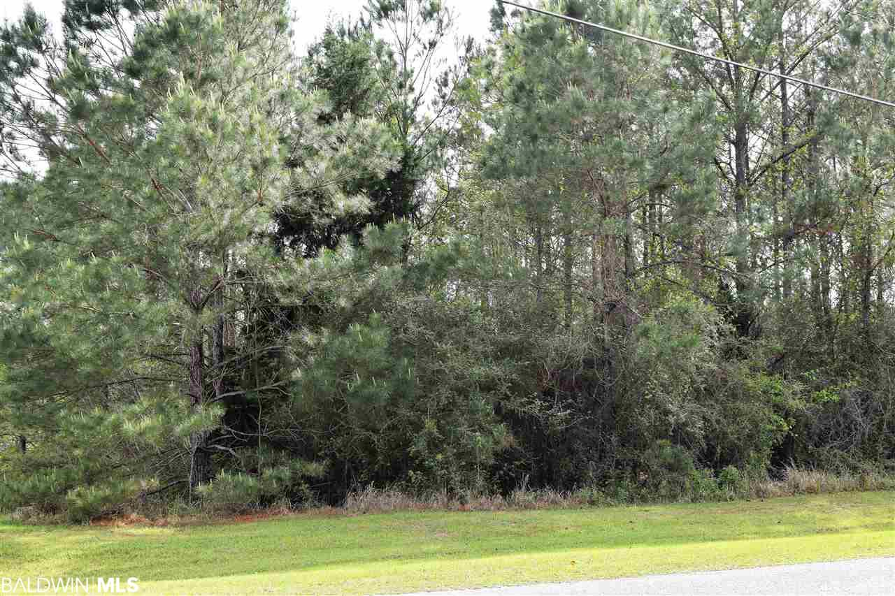 0 Delta Woods Drive, Bay Minette, AL 36507