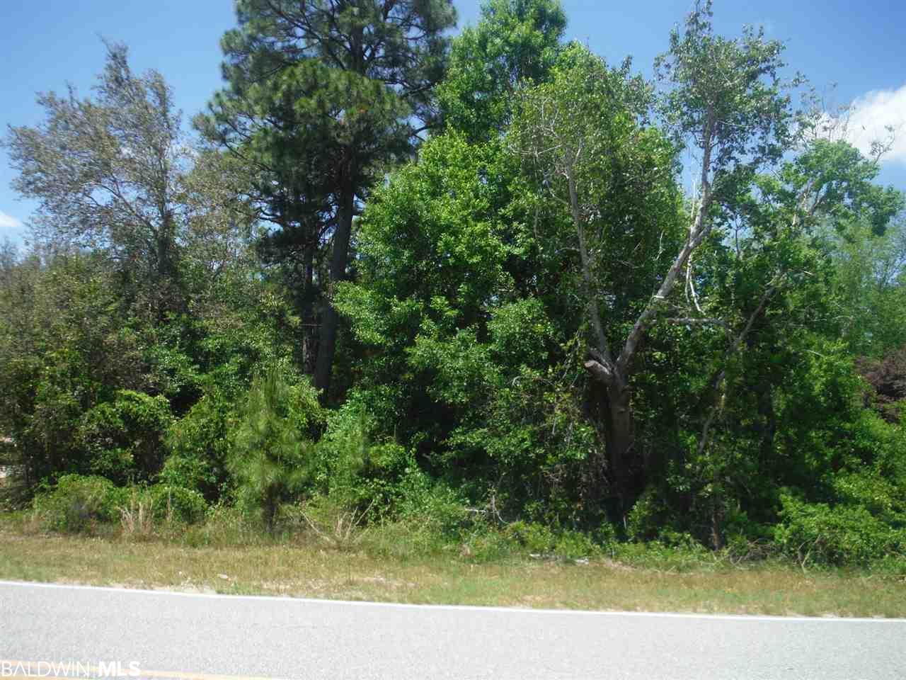 0 County Road 99, Lillian, AL 36549