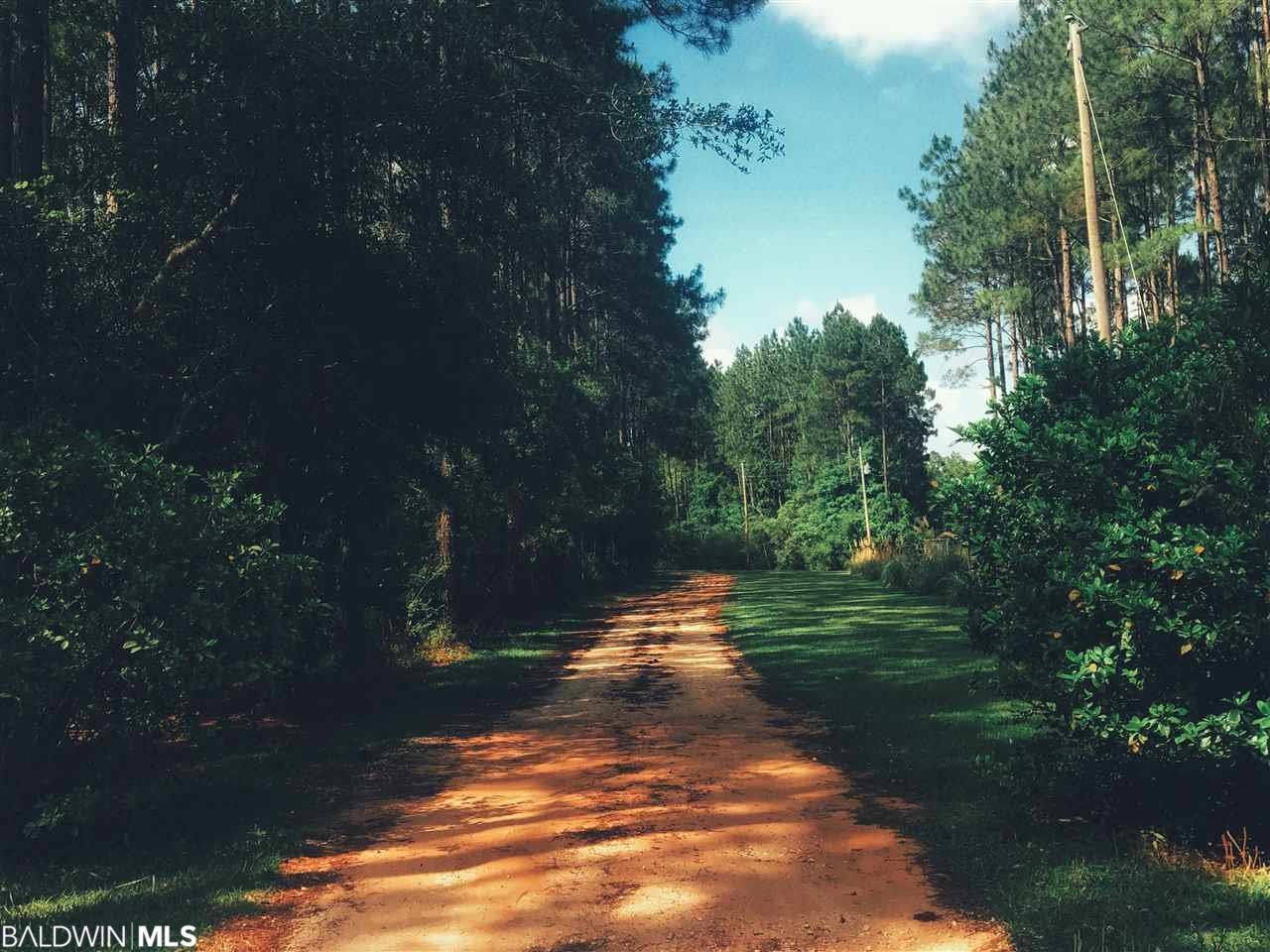 11055 Deer Foot Lane, Elberta, AL 36530