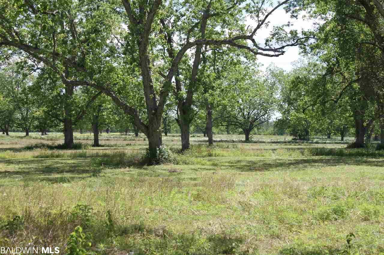 000 S County Road 62, Robertsdale, AL 36567