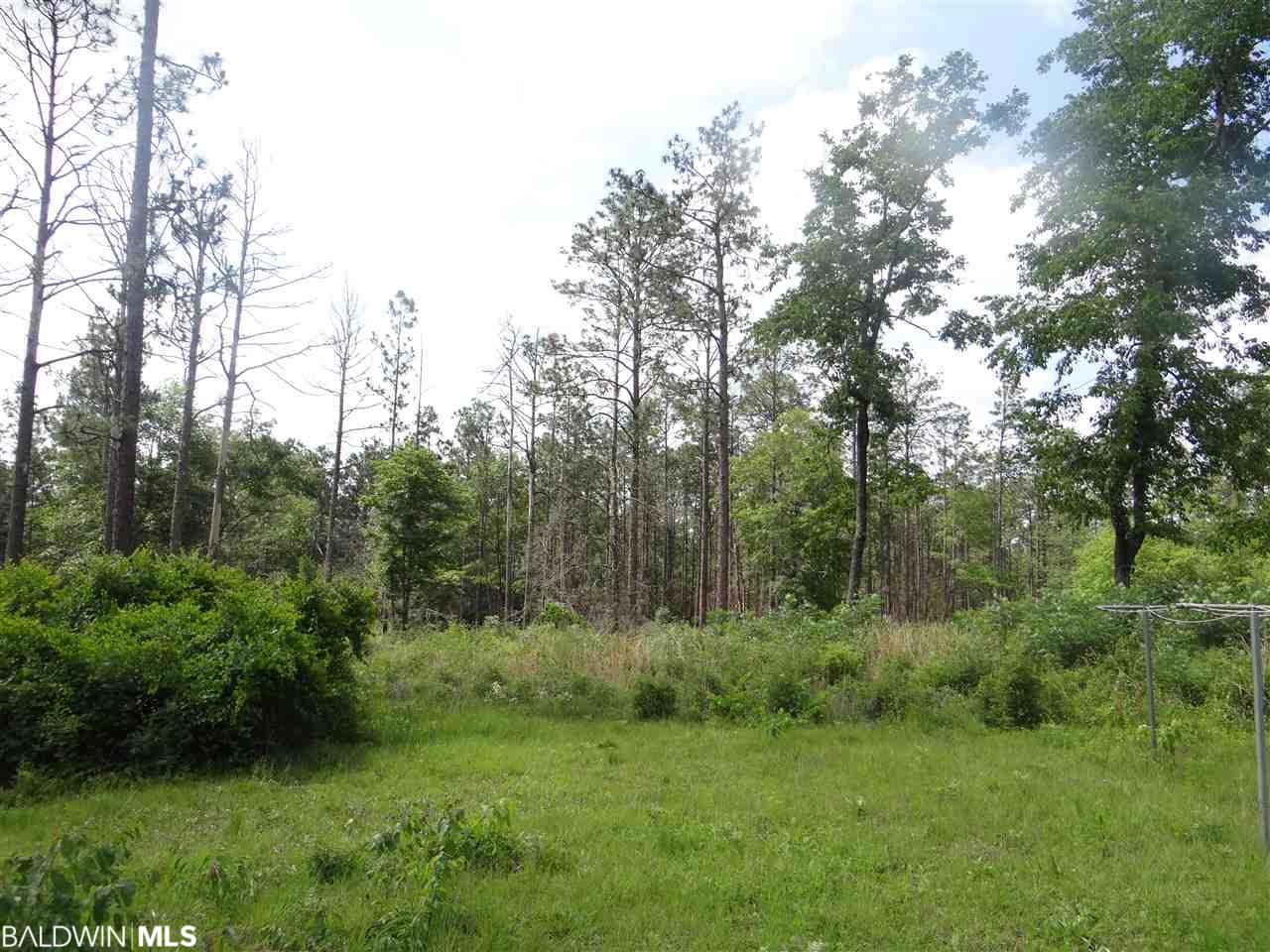 39800 Mary Grice Rd, Bay Minette, AL 36507