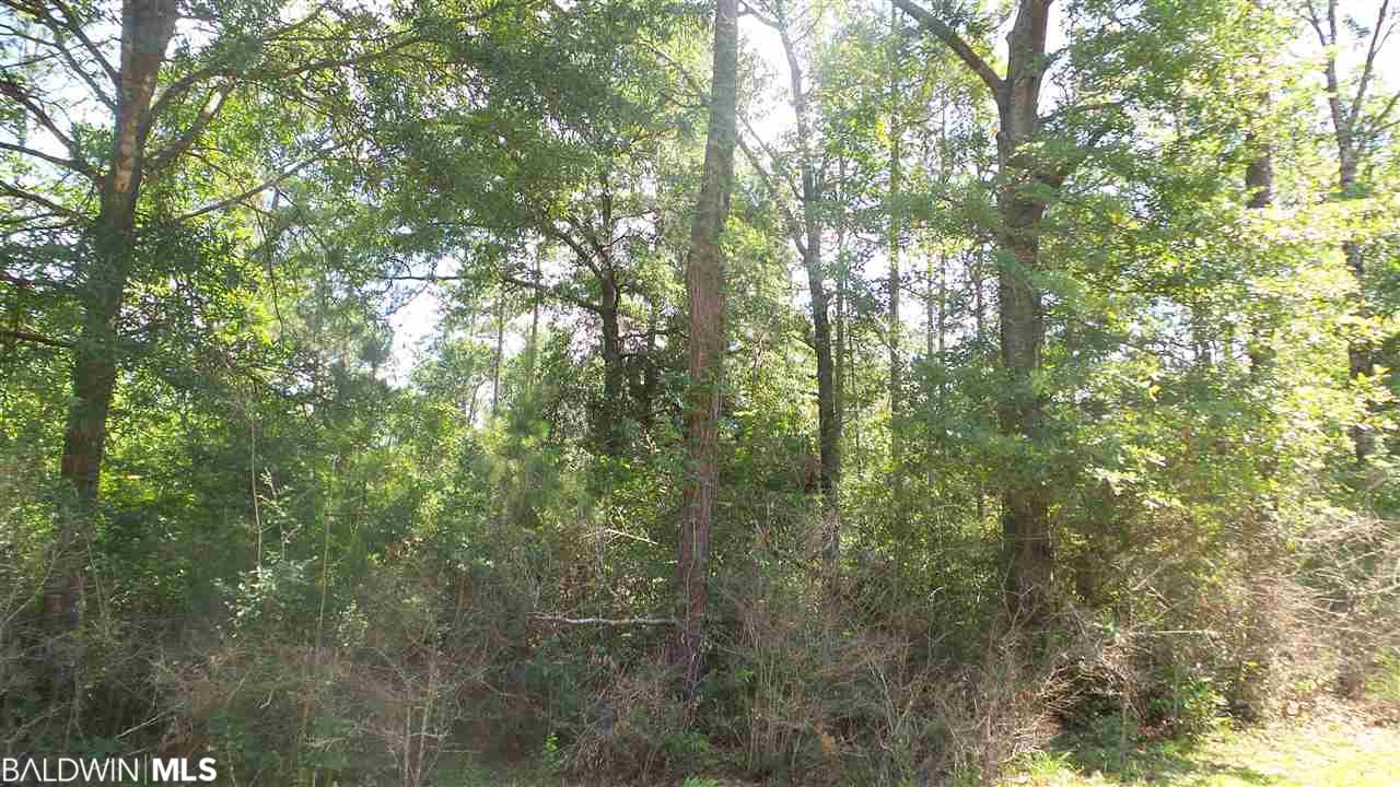Deer Lake Rd, Walnut Hill, FL 32568