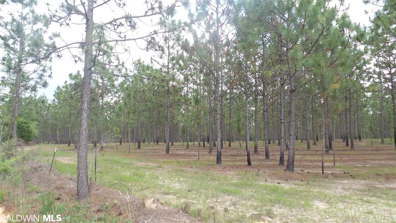 0 Hwy 97 A, Walnut Hill, FL 32568