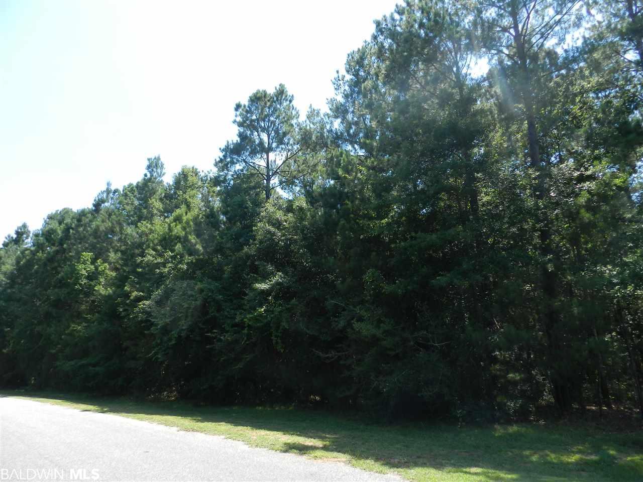 0 Beatrice Road, Gulf Shores, AL 36542