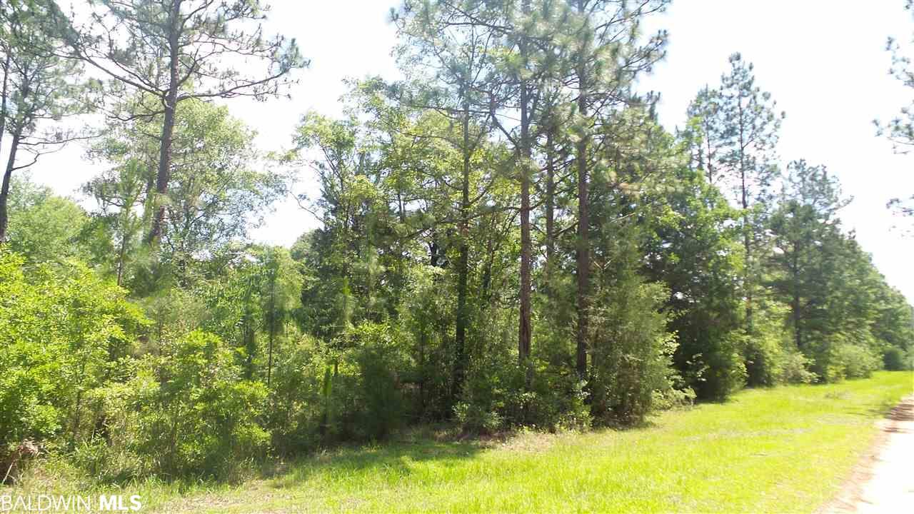 Deer Lake Rd, Walnut Hill, FL 32568
