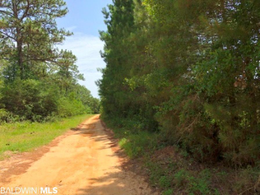 0 Fox Lane, Lillian, AL 36549