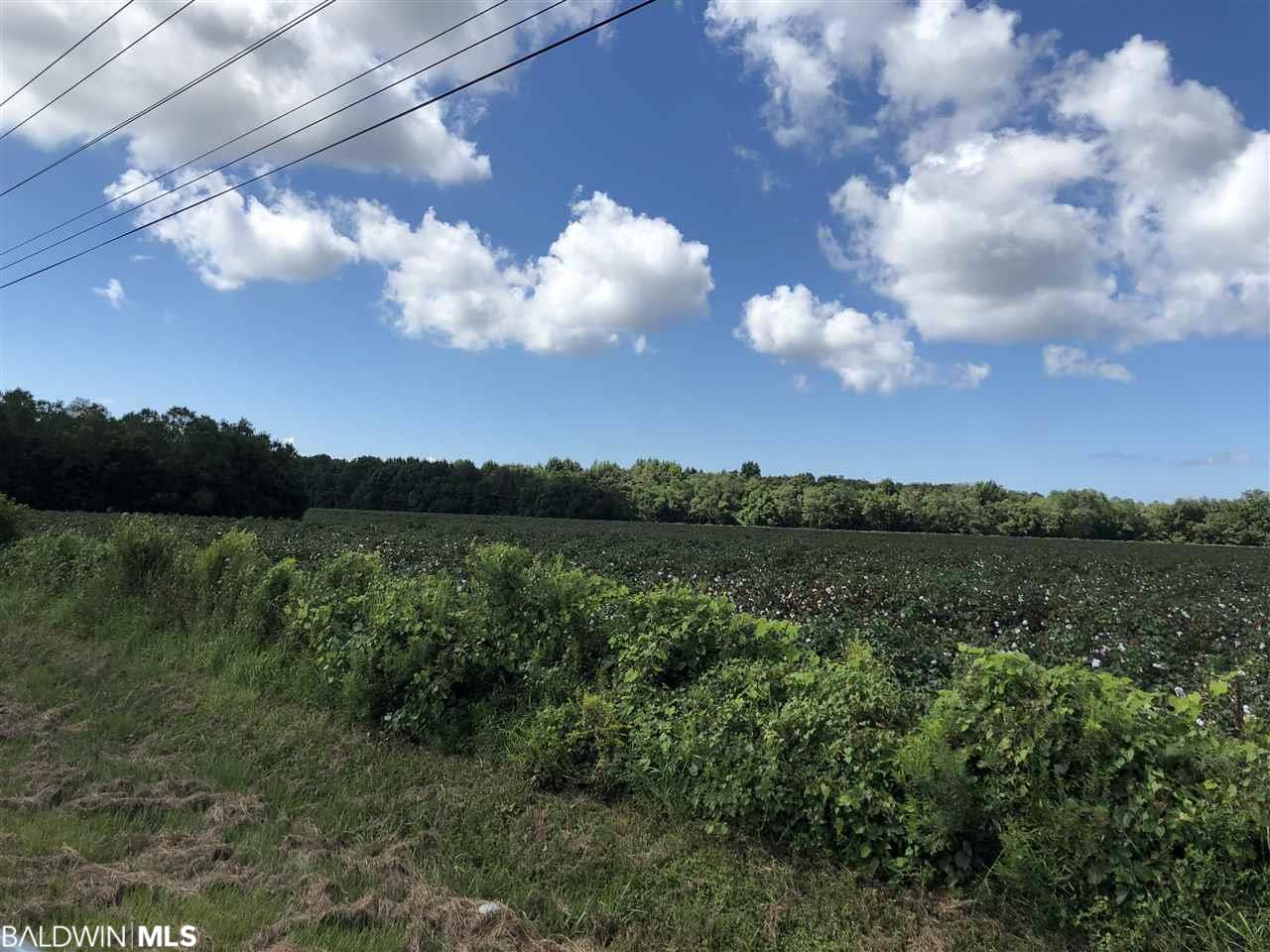 0 County Road 13, Fairhope, AL 36532