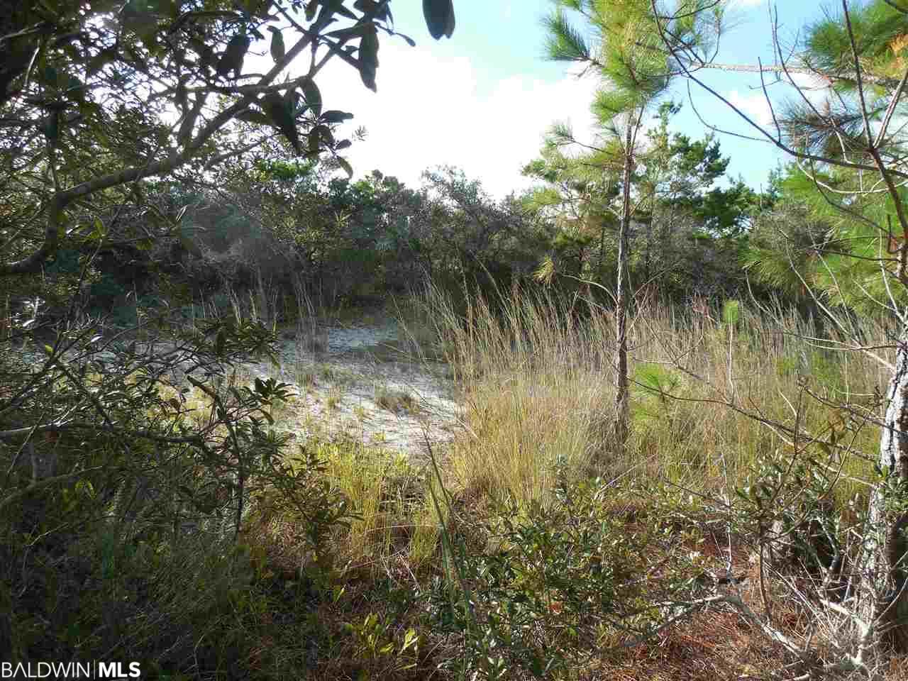0 Driftwood Dr, Gulf Shores, AL 36542
