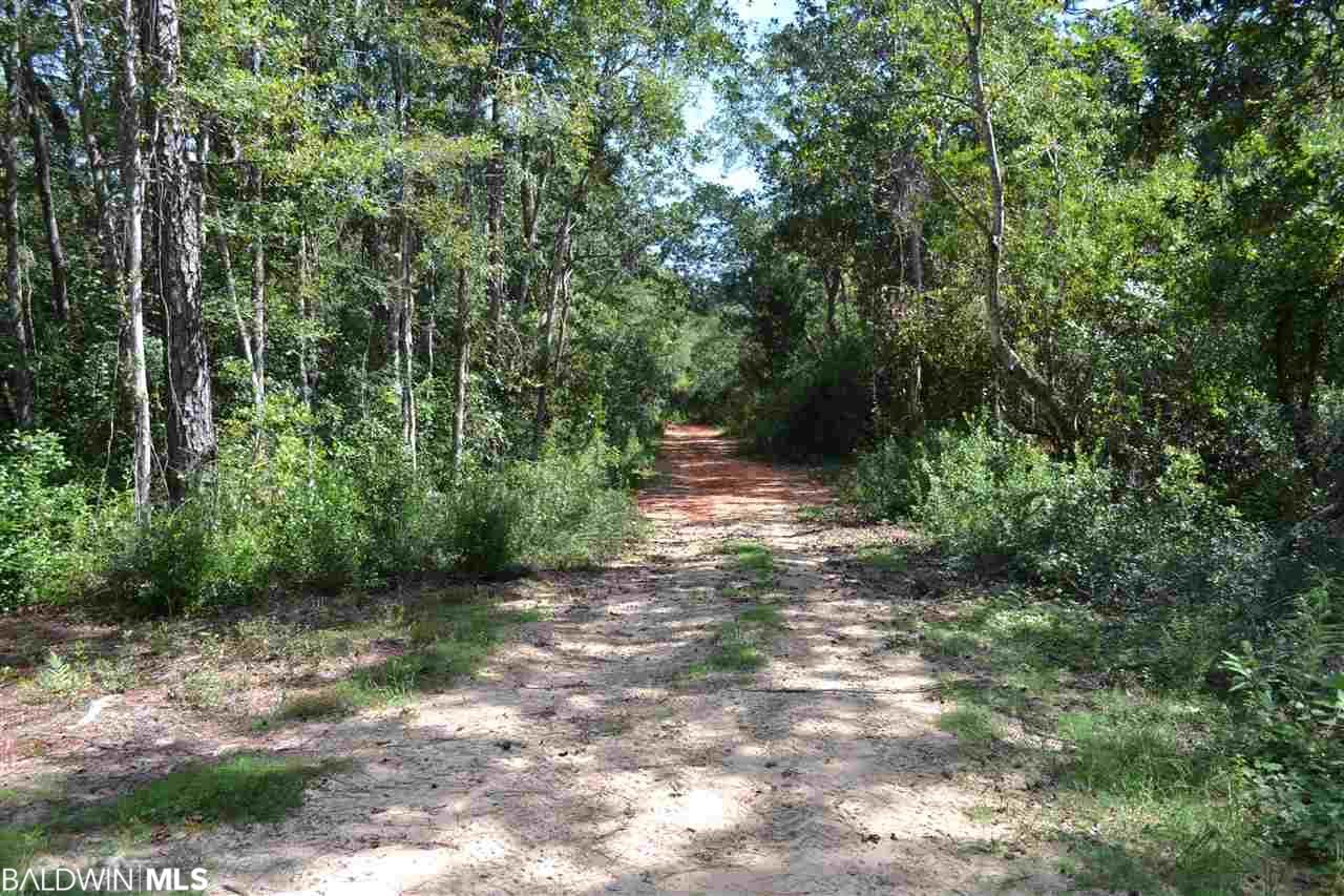 10860 County Road 99, Lillian, AL 36530
