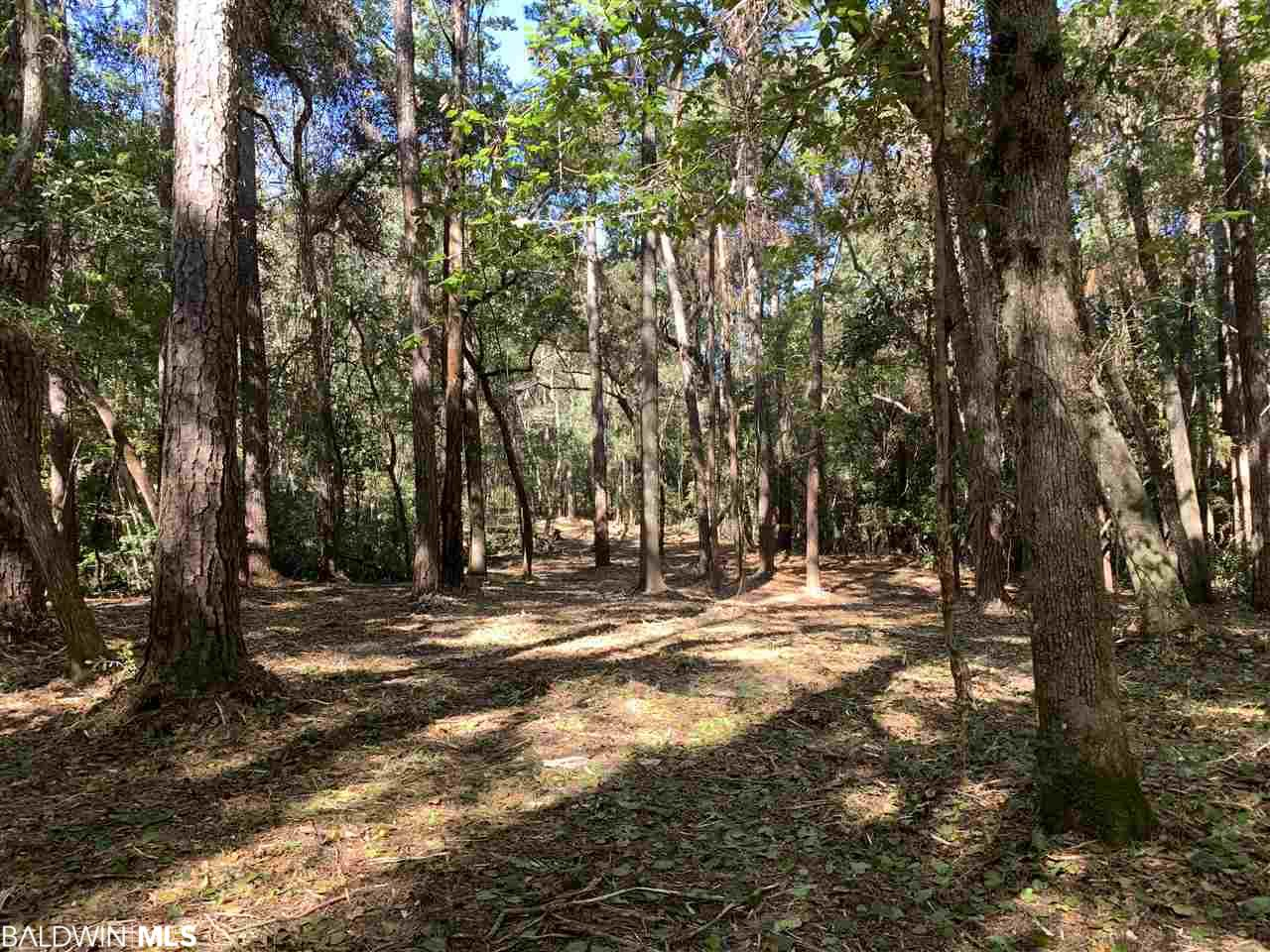 Underbrush recently cleared. Build your private dream home on approx 1.7 acres in Montrose , less than 5 mins from Old Towne Daphne & 5 mins from downtown Fairhope. On secluded cul-de-sac just off Main Street. Enjoy the natural setting as Rock Creek runs through property that can accommodate your canoe or kayak.