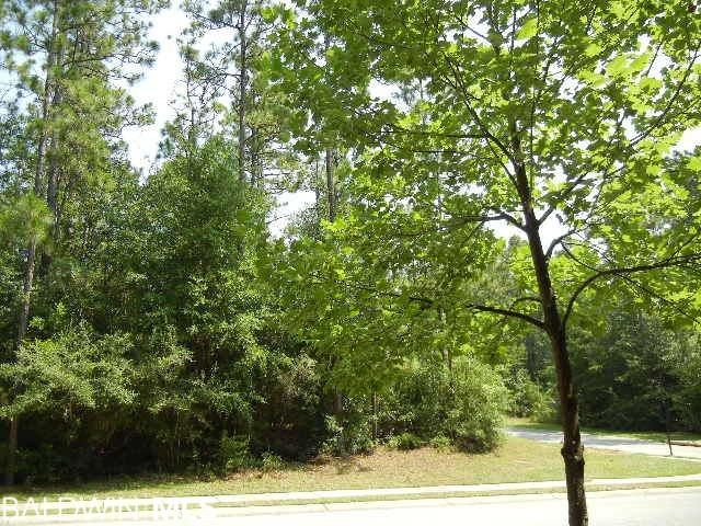 "REDUCED OVER $29,000! Don't let this beautiful lot get away. Plans available and shown under pictures. One of the best lots in Sandy Ford - Prime lot in the subdivision; view green space on both sides. Want to feel like you are in the North Carolina Mountains? Sit high above the street! Build your dream home on the most beautiful level bluff-like lot. One of the larger lots in the subdivision, overlooks green space across the street and down the ""valley"". This is a very desirable Fairhope subdivision laden under majestic trees that create a tranquil and serene setting. Building restrictions are under documents; there is a 2600 sq. ft. minimum enclosed livable area H & C requirement for a single level home and not less than 2200 sq. ft. on ground floor for a 2-story home. There are also home plans that will convey with the sale of this property if desired. See photos online of the floor plan."