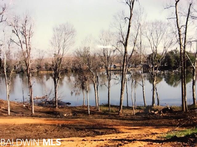 16 River View Landing Drive, Camden, AL 36726