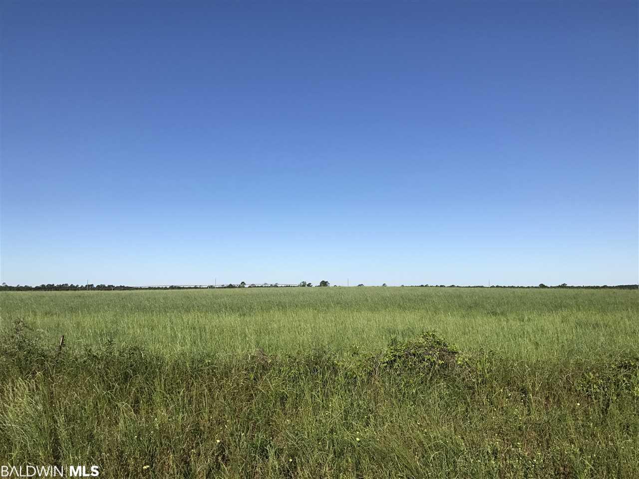 0000 N County Road 91, Lillian, AL 36549