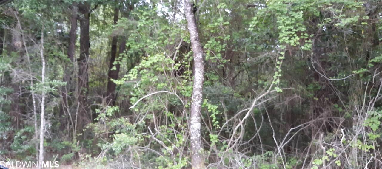 This is a great opportunity to own a large wooded estate home site or small hunting preserve. The property is less than 4 miles from the Eastern Shore shopping center and I-10.  Listed below market value the seller wants to move it.