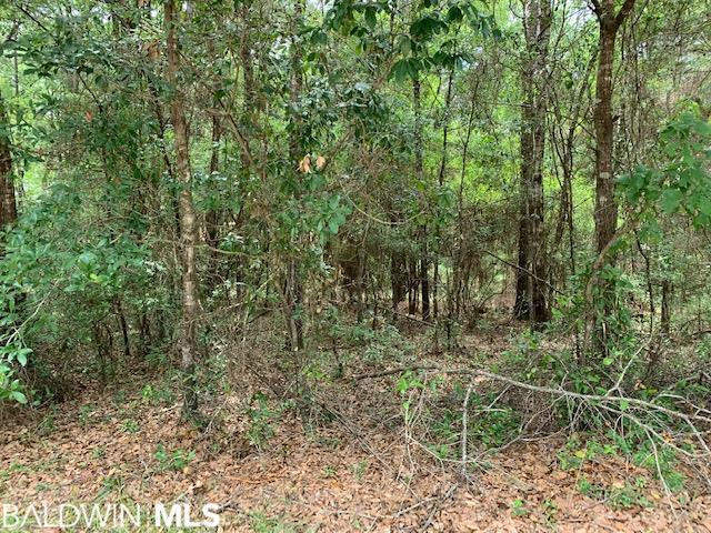 Truly Buildable Lot in Plantation Pines! The subdivision is found off Hwy 98 in Fairhope and is beautifully wooded providing you with the option of leaving some mature shade trees in your yard. This lot would require minimal build up. Survey and restrictive covenants on file. Please contact listing agent for more details.
