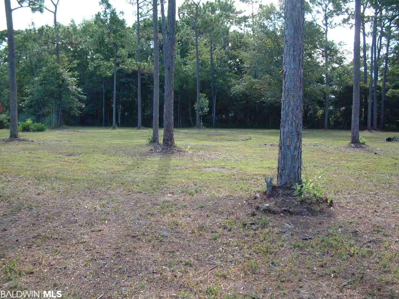 0 Bay Forest Drive, Foley, AL 36561