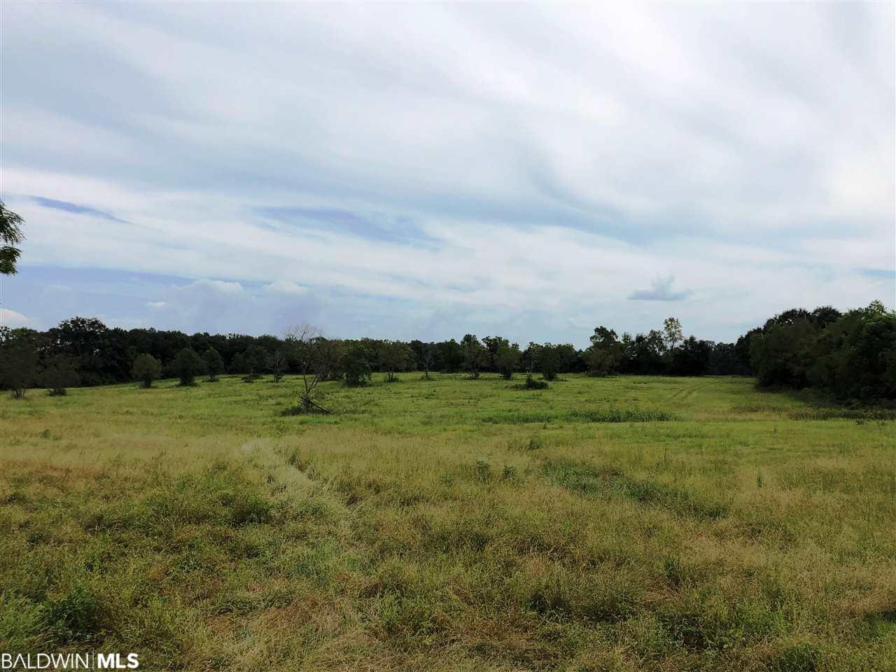 0 County Road 64, Loxley, AL 36551