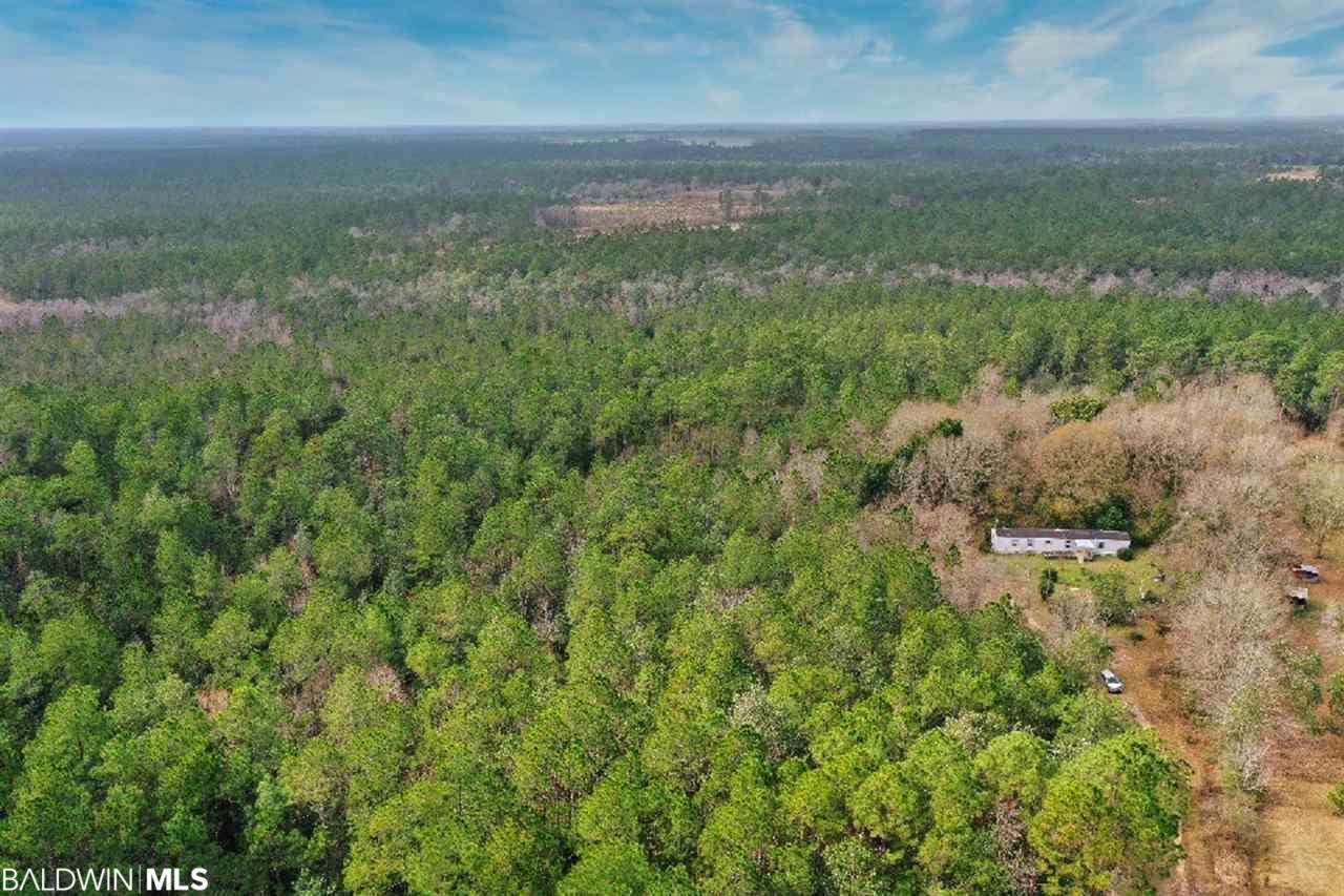 20347 Boggy Branch Lane, Seminole, AL 36574