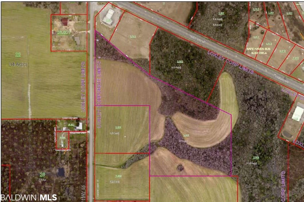 21 prime acres located very near downtown of Loxley, Alabama. The property is partially timbered and partially cleared to be farmed. Would be a fantastic opportunity to build the home of your dreams with privacy, yet convenience to everything. Parcel is just minutes from I-10 and an easy commute to Mobile, Gulf Shores, and Pensacola. Rare opportunity to own a nice parcel of land in the middle of Baldwin County. LISTING BROKER MAKES NO REPRESENTATION TO ACREAGE ACCURACY. BUYER TO VERIFY.