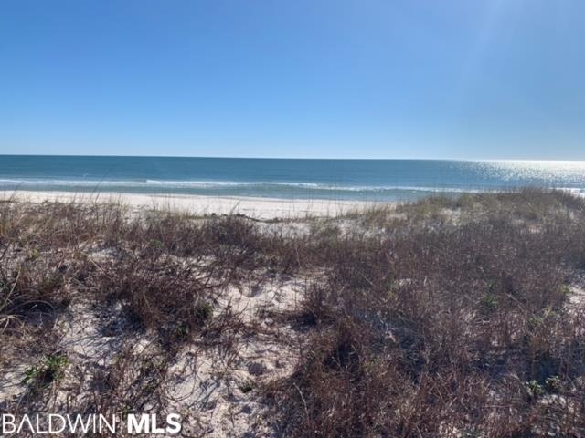 Dolphin Drive, Gulf Shores, AL 36542