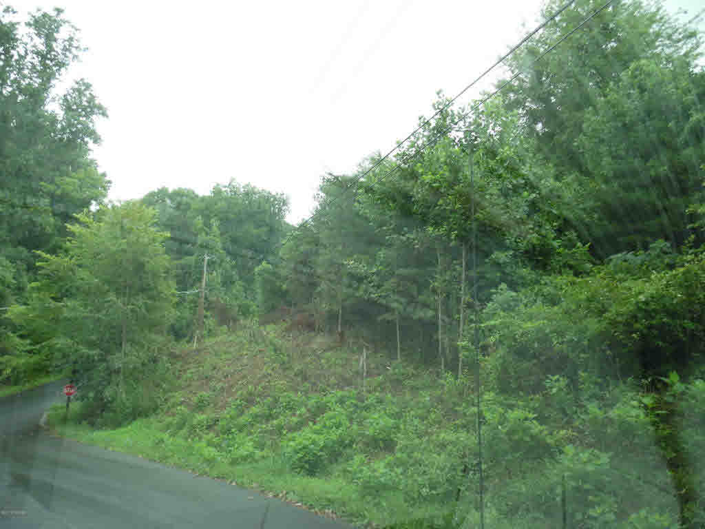 3 lots on corner of Ambrose & Porter ST with mountain views, great place to build, Public water available.  Bring all offers!